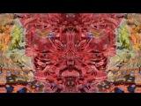 Tipper Ambient Set @ CoSM Alex Grey Art