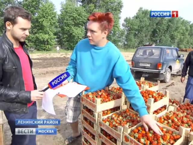 Добровольцы едут в совхоз имени Ленина на клубнику