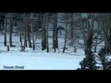 Волчья стая - Александр Малинин