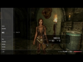 Skyrim- Companion mod spotlight - Alicia the slave girl and Jessica Alba