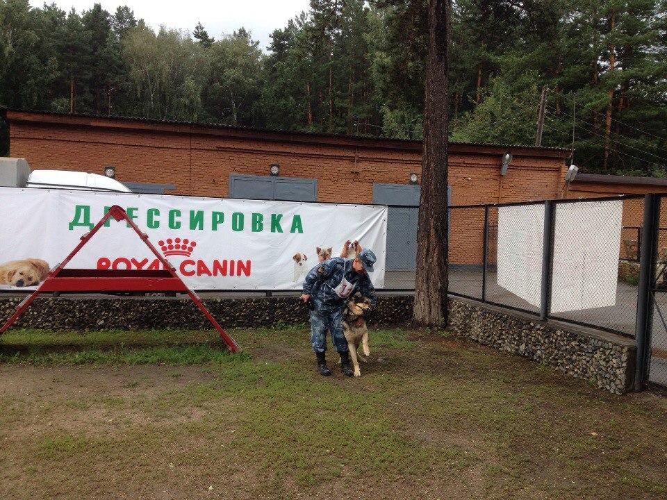 8-9 августа 2015 года Чемпионаты России Академическое и Современное двоеборье 6kVt1i7pq-w
