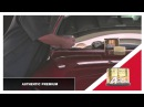 Soft99 Authentic Premium Carnauba Wax by JDM Chemicals
