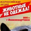 """4 октября 2015 г. Акция «Животные – не одежда!"""""""