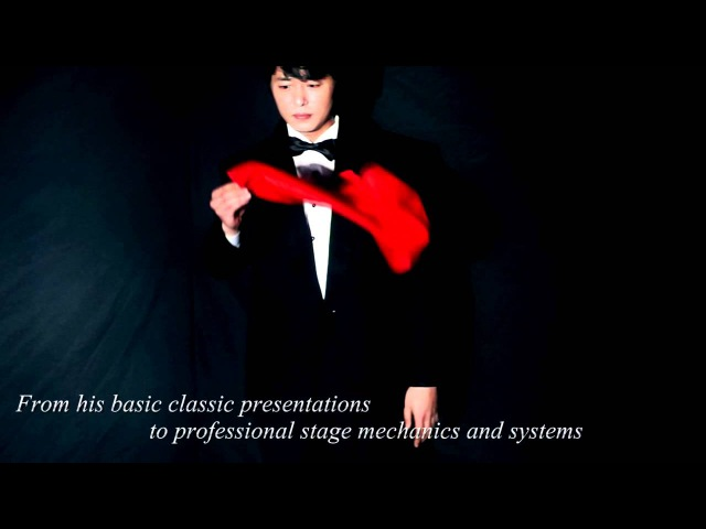 Professional by Kim Hyun Soo