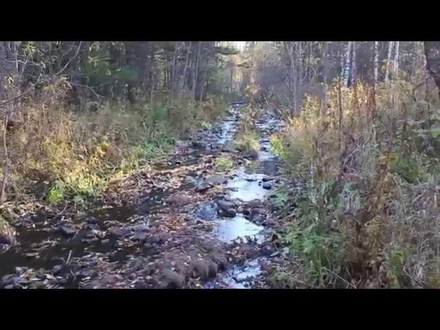 Осенний одиночный поход по избам, тайга, балаганы. Дудет, Ванькина речка, Карадат...