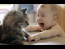 ОЧЕНЬ СМЕШНОЕ ВИДЕО ПРО ДЕТЕЙ - Что терпят кошки от детей, а что нет
