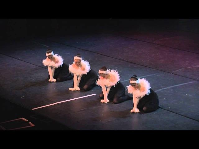 Dance World made in Takane, Japan. Swan Lake