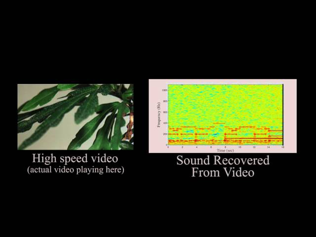 The Visual Microphone Passive Recovery of Sound from Video