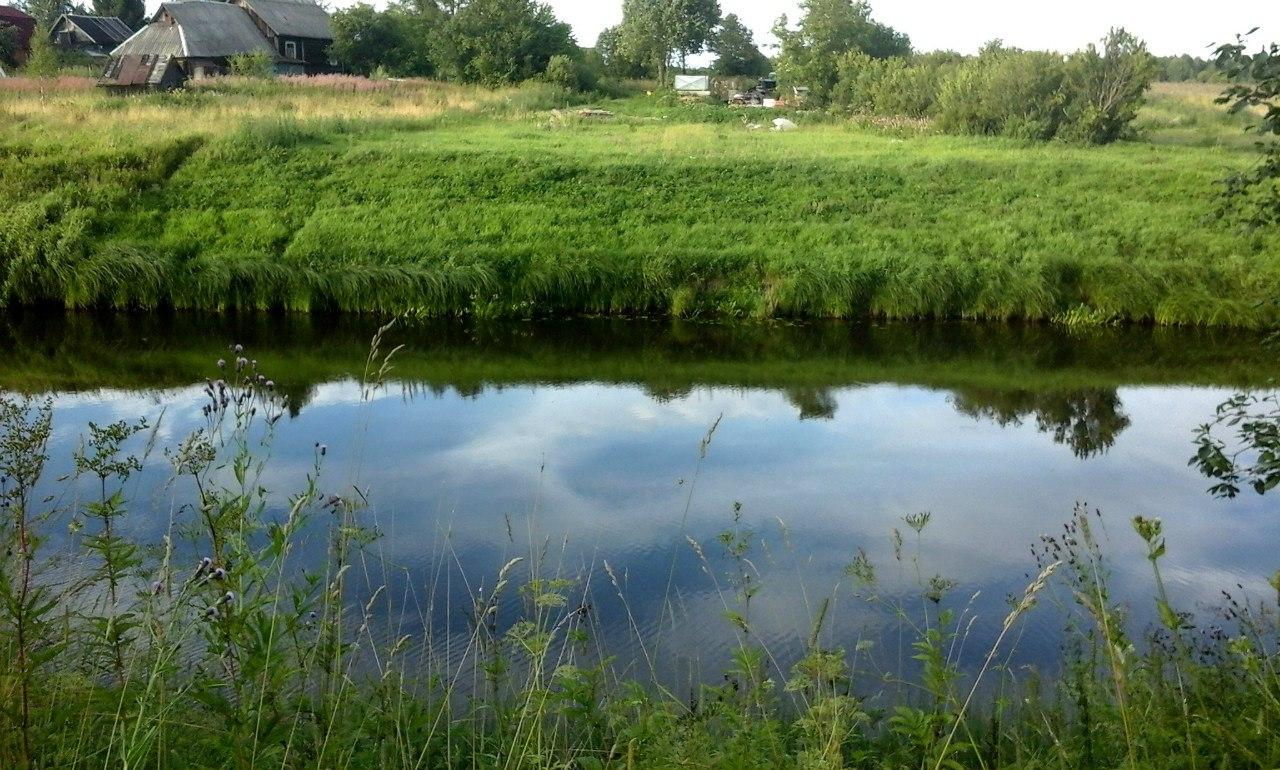 Сказочные красоты реки Тигоды. Малоизвестный тихий уголок Ленинградской области. 10 фото.