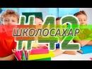 ШКОЛОСАХАР 42 CS 1.6