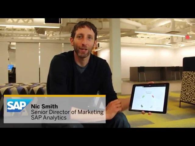 David McCandless Visualization in SAP Lumira