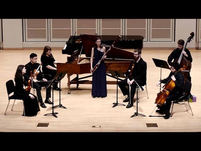 Vivaldi - Concerto in G Minor RV 495