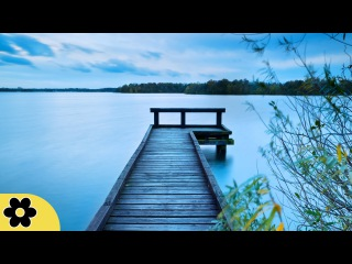 3 Hour Super Deep Meditation Music: Nature Sounds, Relax Mind Body, Relaxing Music ✿630C