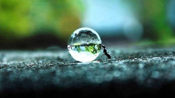 Почаще заплывайте за буйки своих страхов и неуверенности, ведь прямо за ними вас...