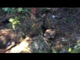 18+ Разгром колонны карательного батальона Айдар 05.09.2014 ч 2