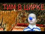 VLOG Цирк веселые выходные с Тимом Circus fun weekend with Tim