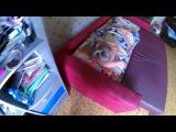 НАССАЛ НА СЕСТРУ. ЖЕСТОКИЙ РОЗЫГРЫШ (БпС) - Видео Dailymotion