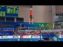 45-й ЧМ по спортивной гимнастике (Наньнин - 2014) – Перекладина (мужчины)