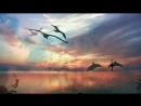 «просто» под музыку Николай Парфенюк - Плыли облака.