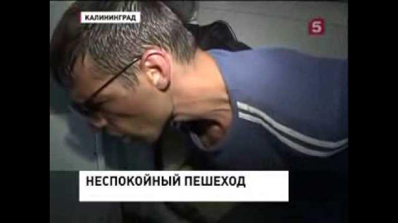 Русские идут домой