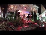 Ресторан Дачная Жизнь (Сергиев-Посад) - Саксофонист Syntheticsax Михаил Морозов