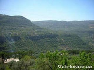 Ливан: Вершины мира.