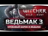 Прохождение Ведьмак 3: Дикая Охота #3. Кровавый Барон и проклятая Ведьма.