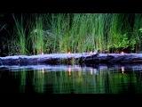 Come away with me lyrics - Norah Jones