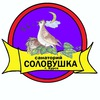 "Вожатые и Воспитатели ""Соловушки"""