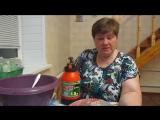 И снова о пикировке томатов в пеленки