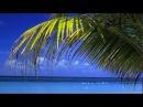 Scott Lowe, Duncan Brewer & Dan Winter - Summer Solstice
