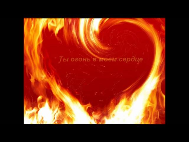 Любовь, страсть и нежность