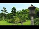 Relaxing Japanese Music with Traditional Bamboo Flute, Koto, Shamisen- Zen Garden Music Video