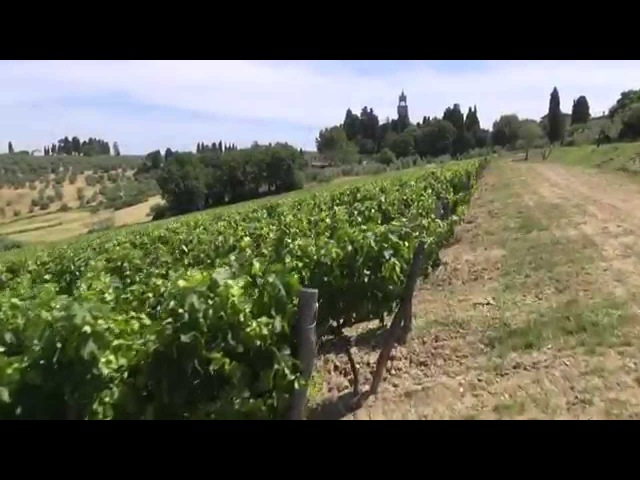 Marchesi de' Frescobaldi - dediti da trenta generazioni alla produzione di grandi vini toscani
