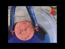 В ПОИСКАХ КЛАДА. Реставрация медных монет. Гальваника.