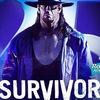 WWE Survivor Series 2015 Прямая трансляция