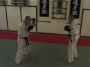 MMA Tsu Shin Gen Kata 7