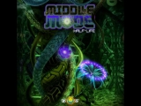 Middle Mode - Multiverse