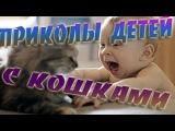Приколы детей с кошками 2015 [HD] | Приколы детей с животными | Приколы с детьми [Tree Minutes]