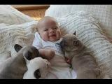 Приколы детей и животных #2 Смешно до слез :)