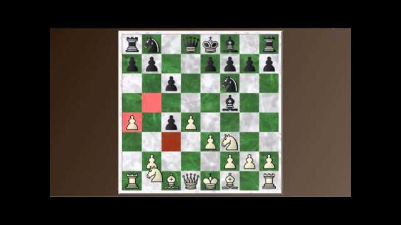 Chess Basics 43: The Queen's gambit declined - Slav and Semi-Slav defenses