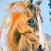 """Конный магазин  """"Рыжий конь"""""""