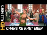 Chane Ke Khet Mein   Poornima   Anjaam 1994 Songs   Shahrukh Khan, Madhuri Dixit