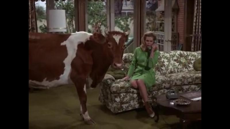 Моя жена меня приворожила(Bewitched;Околдованный)(США,1964-1972г.г.)Сезон 3,20-я серия(94-я серия).
