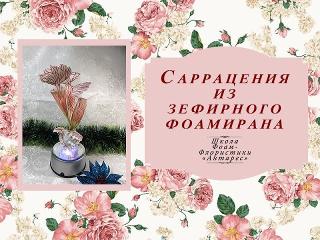 Саррацения. Автор МК: Евгения Болотова