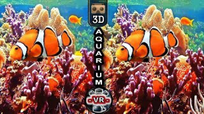 VR Videos 3D Aquarium VR Relaxation 3D VR 4K for Google Cardboar VR BOX 3D not 360 VR