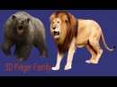 Lion King Vs Bear Epic Battle Finger Family| Nursery rhymes | 3d Animated cartoon Rhymes For kids