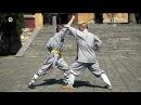 Shaolin kung fu luohan 18 hands, combat methods