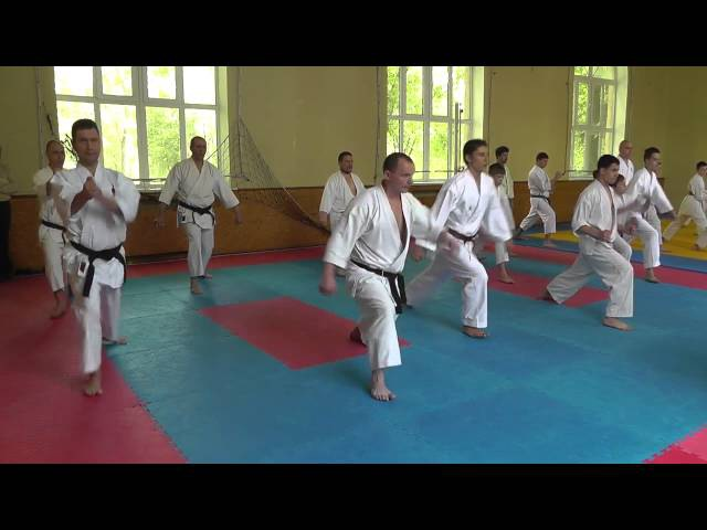 Семинар по Каратэномичи Запорожье май 2015 1 Seminar Karatenomichi Zaporozhye May 2015 1