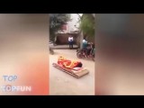 New Funny videos 2016 funny vines try not to laugh challenge